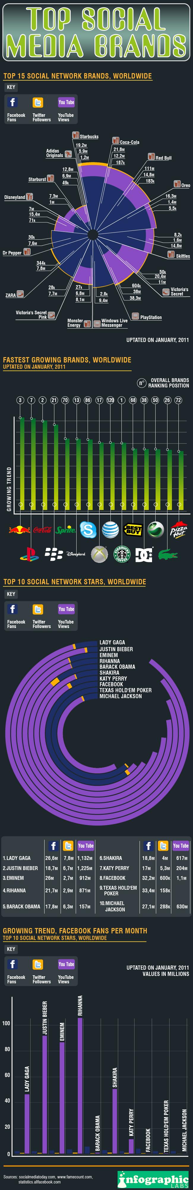 Social-Media-Brands-infografic