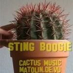 cactus-music-asociere-interesanta