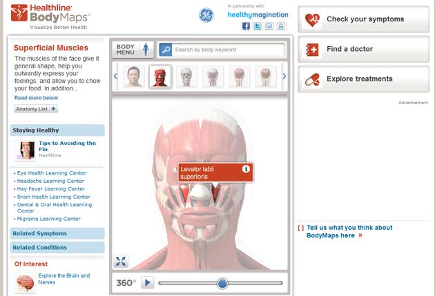 healthline-bodymaps-harta-3d-interactiva-corp-uman-anatomie