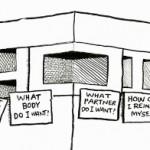 paradoxul alegerilor rsa