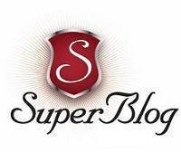 superblog-2014-obisnuit-eu