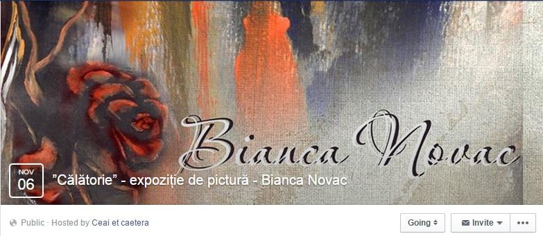 arta-brasov-nov-2014-bianca-novac-calatorie