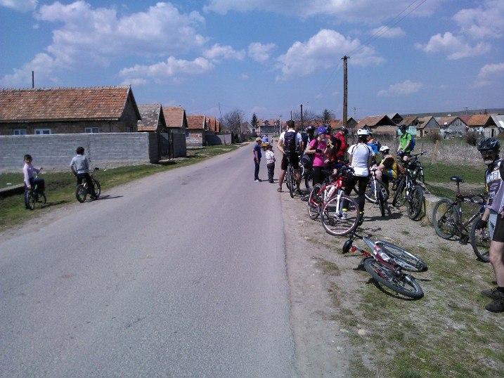 tigani-araci-ataca-pietre-biciclisti