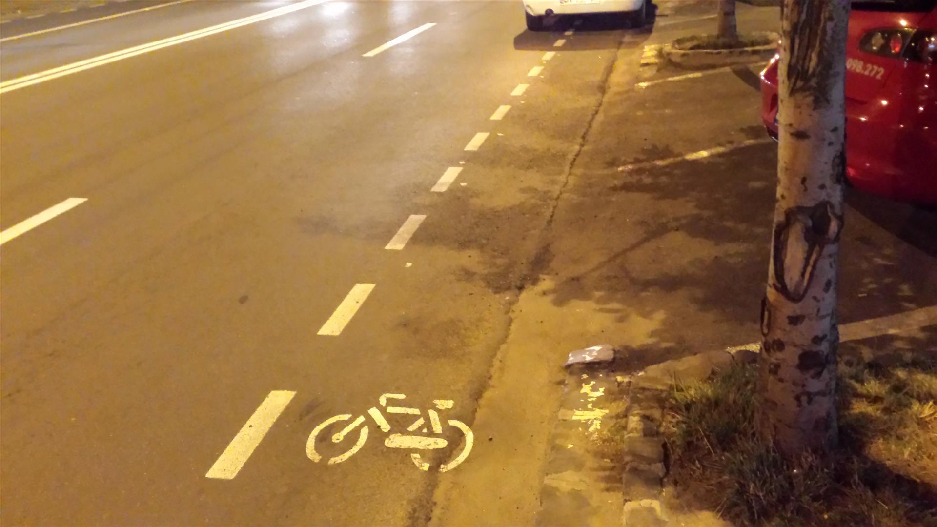 piste-biciclete-brasov-iunie-2015 (7) (Large)